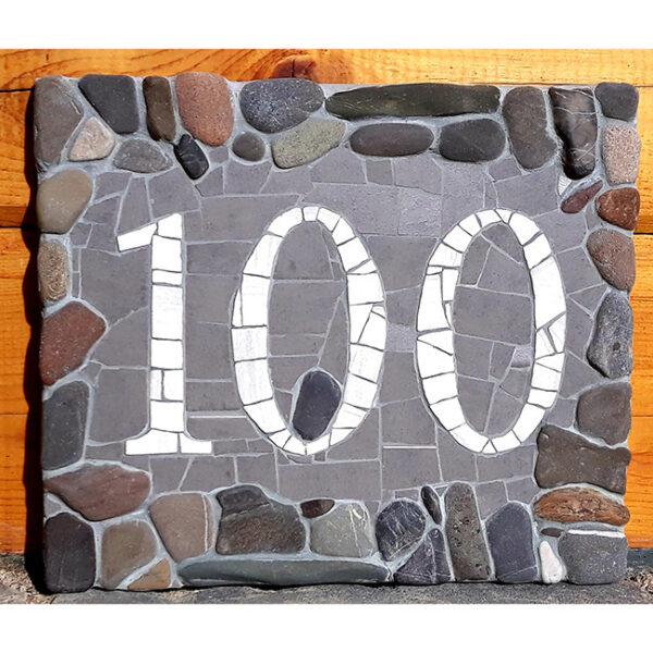 Hišna številka 100