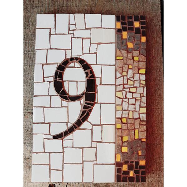 Hišna številka 9